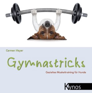 cropped-gymnastricks21.jpg